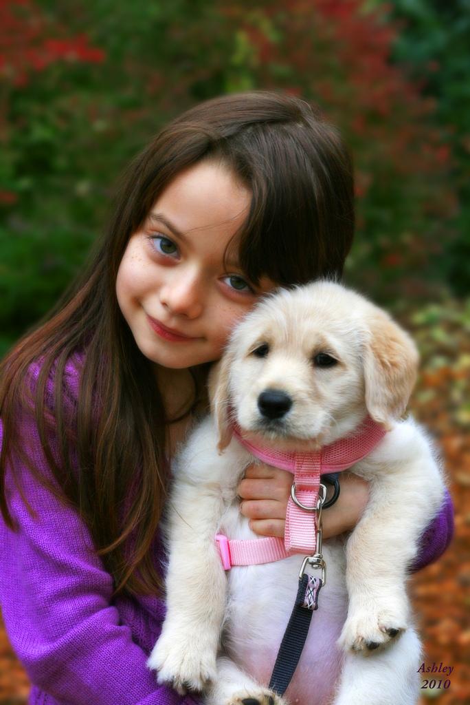 Minkä ikäiselle lapselle koira?