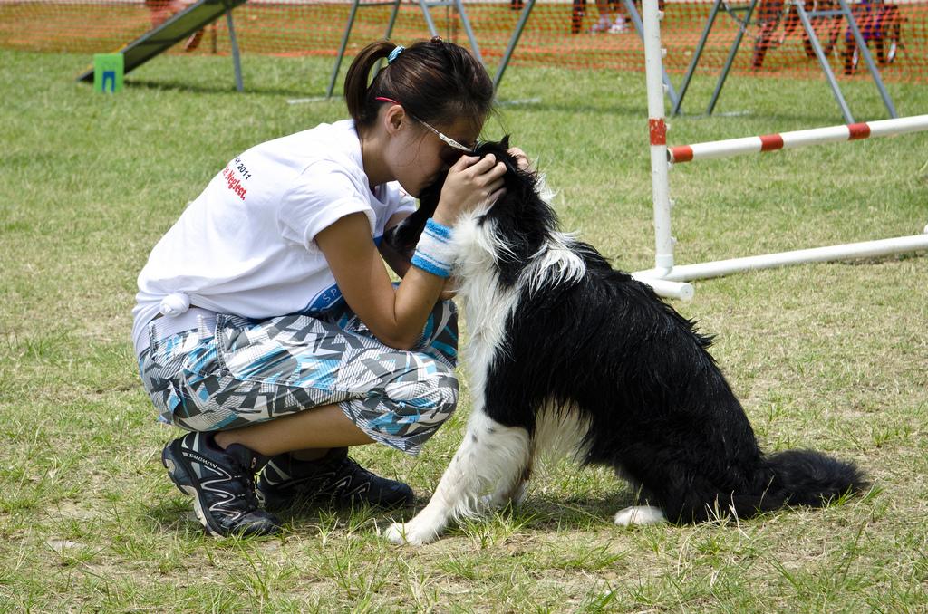 Koiran liiallinen kiintymys