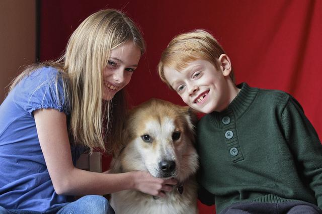 Koiran hoitaminen opettaa kantamaan vastuuta